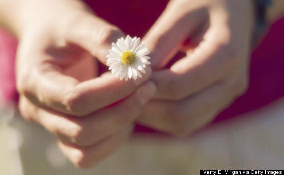 daisy hand