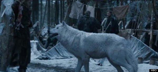 direwolf hbo