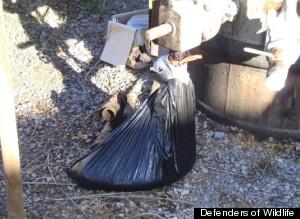 trash bag oil pipe