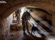 The Incredible Bond Between War Dogs And Their Marine Handlers (PHOTOS)