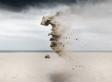 Photographer Captures Wild Portraits Of 'Sand Creatures' That Defy Gravity