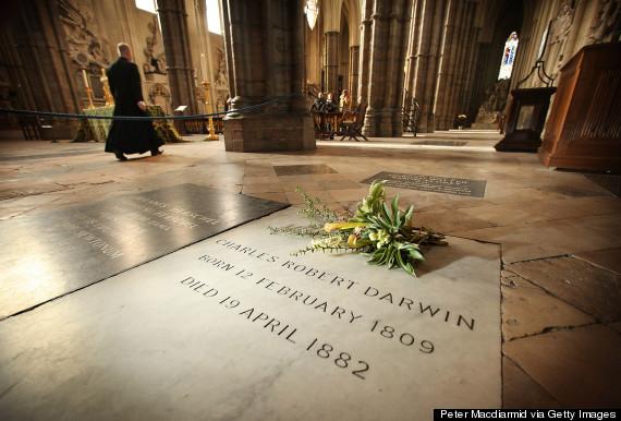 westminster abbey darwin