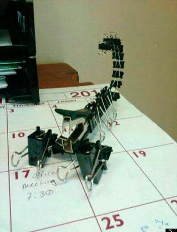 clip scorpion