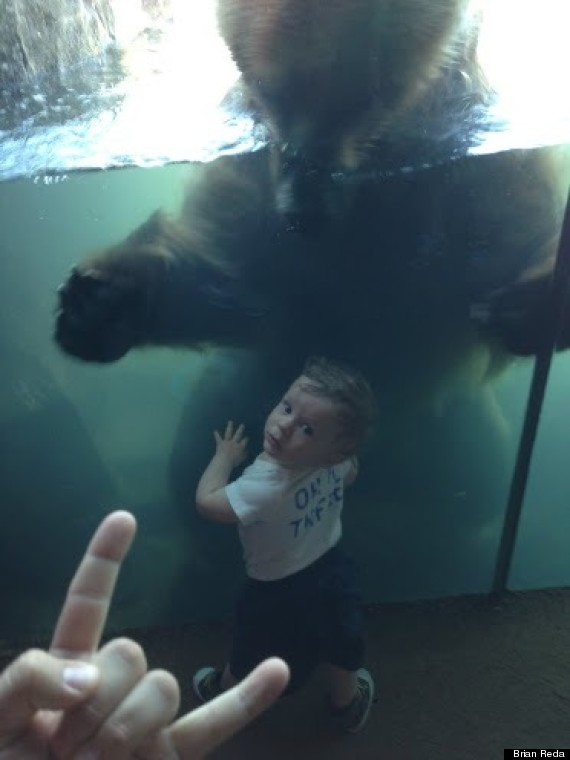 dad life zoo