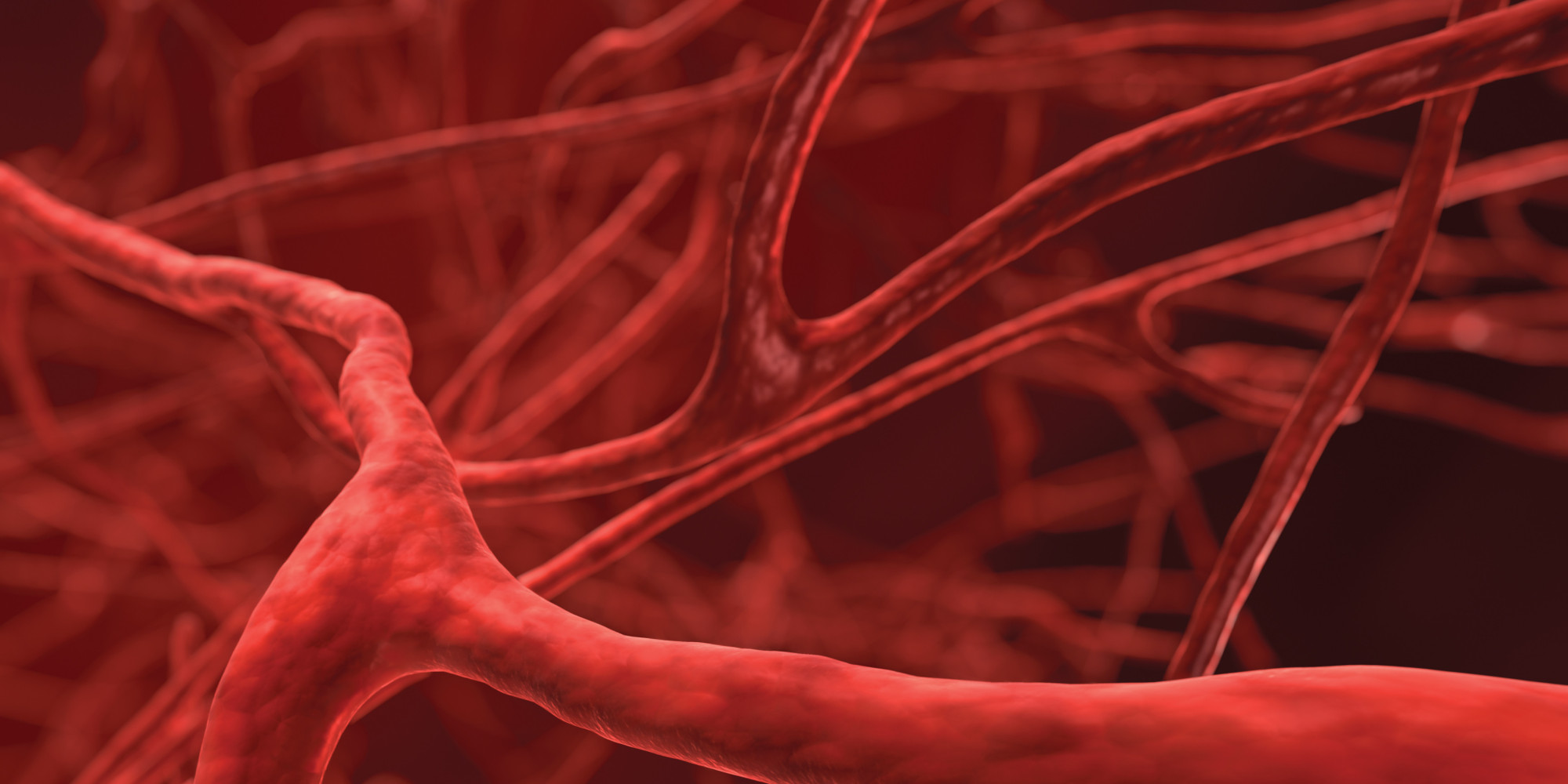 Scientists Can Now 3d Print Human Blood Vessels