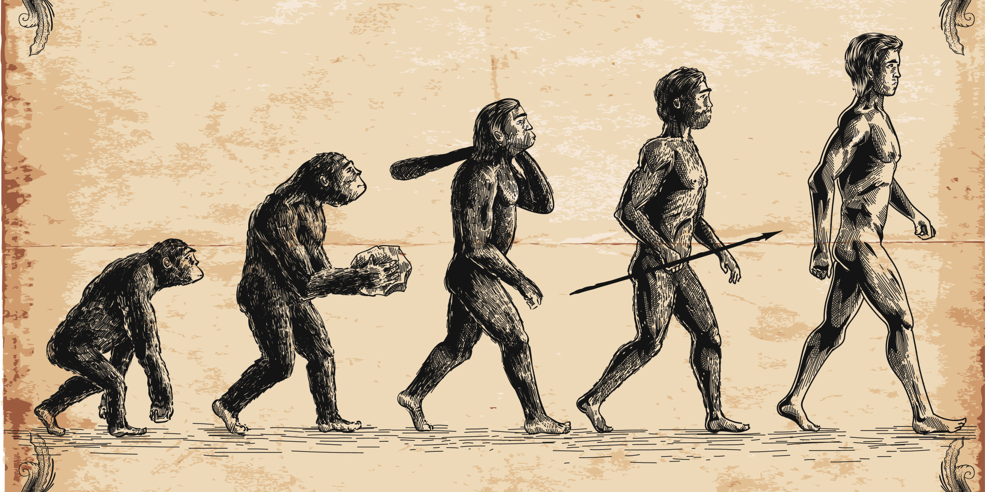 a comparison of evolutionism and creationism in the origin of man Evolution vs creation evolution and creation are two entirely different theories to understand the origins of universe, especially mankind mankind has always been.