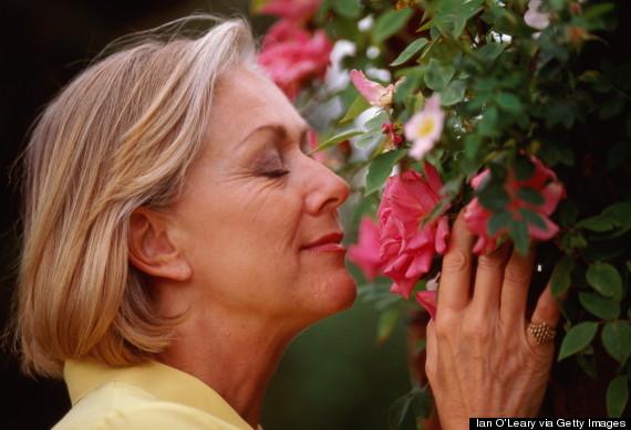 smelling garden