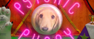 Psychic Puppy World Cup