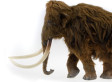 Large Animal Extinction During Ice Age Was Caused By Humans, Not Climate Change: Scientists