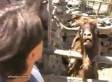This Is Why You Never Conduct An Interview With A Goat (VIDEO)