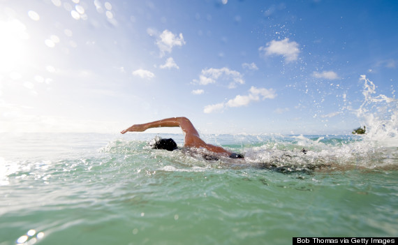 adult swimming ocean
