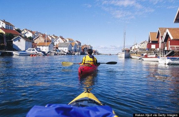 paddle harbor