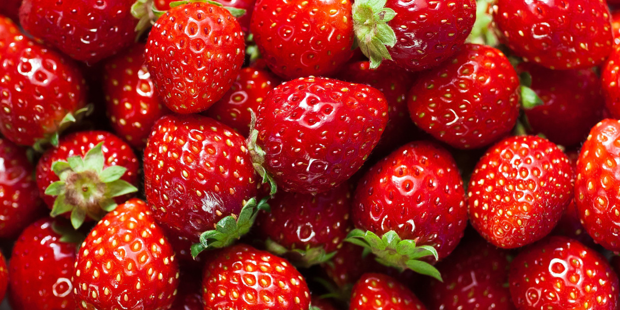 2000 x 1000 jpeg 691kBStrawberry