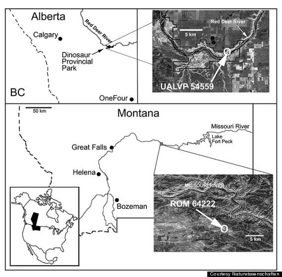 map dinosaur