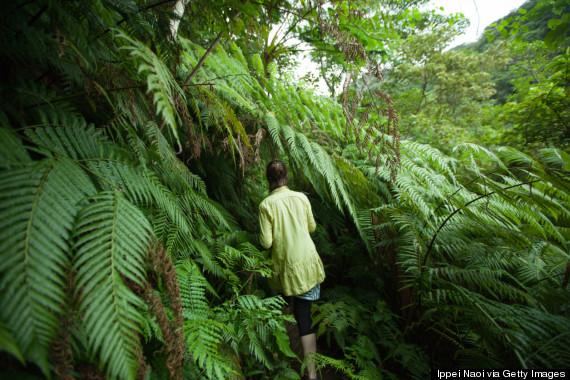 island hike
