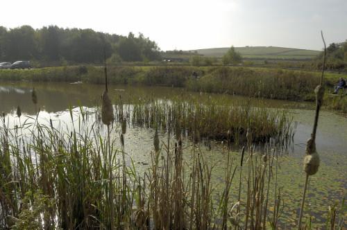 eau et agriculture