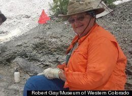 Volunteer Fossil Hunter Makes Record-Setting Discovery