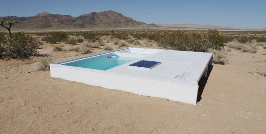 There S A Tiny Pool In The Middle Of The Mojave Desert