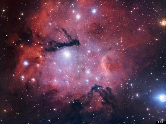 young stars nebula