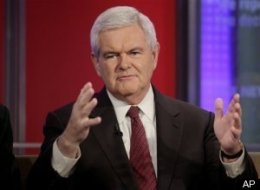 Fox Friends Newt