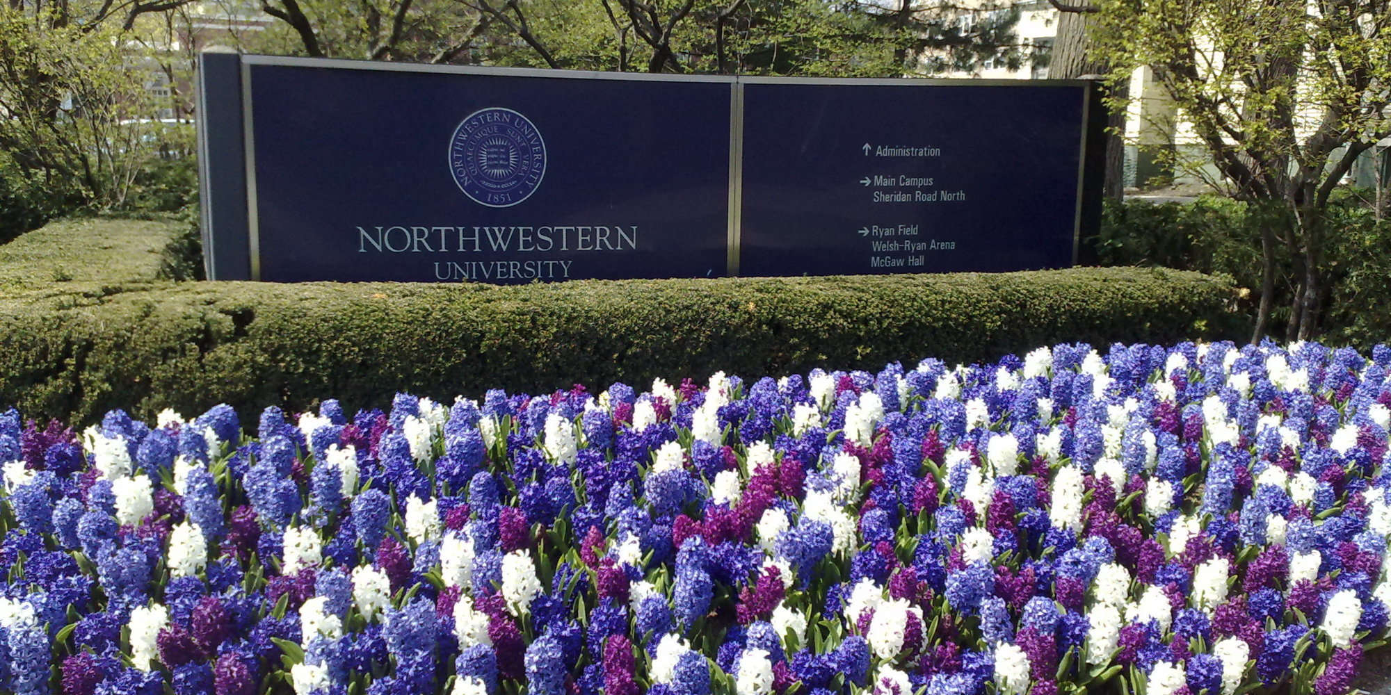 northwestern professor accused of sexual assault wont get