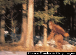 My Search for Bigfoot Led Me to a Republican Party Fundraiser