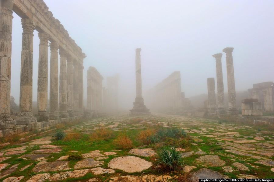 syria nature