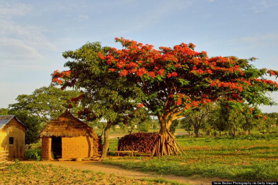 nigeria nature
