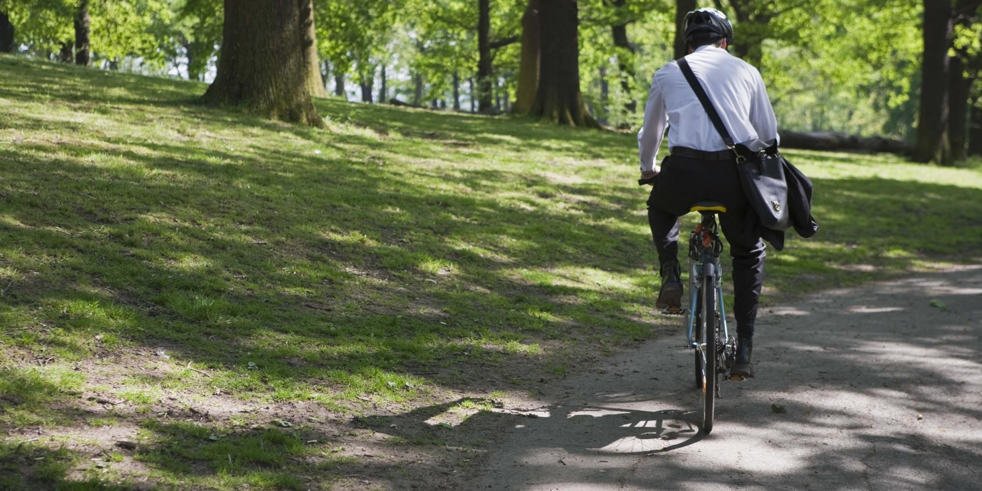 Նորանշանակ փոխնախարարը գործի է գալիս հեծանիվով, ուսին Էլ՝ մի թութակ․  «Հայկական ժամանակ»