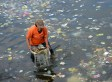 Litter In Oceans Now Spans Even Remotest Parts Of The World