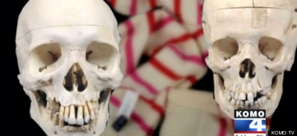 Skulls Mysteriously Donated To Thrift Store
