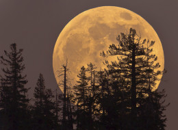 supermoon canada saturday