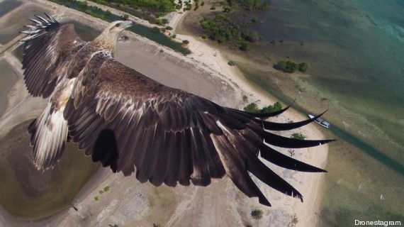 dronestagram 1er prix aigle