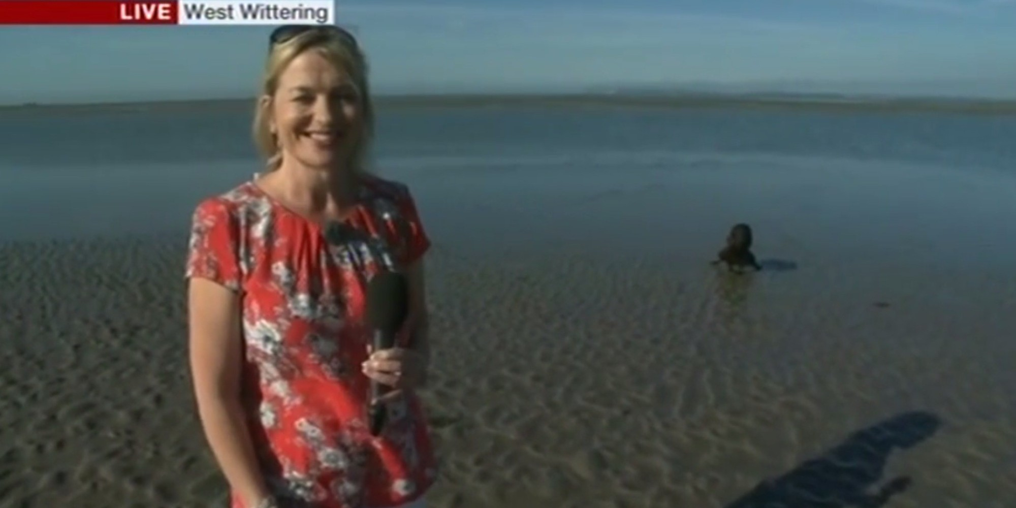 Bbc weather presenter carol kirkwood is upstaged by a for The kirkwood