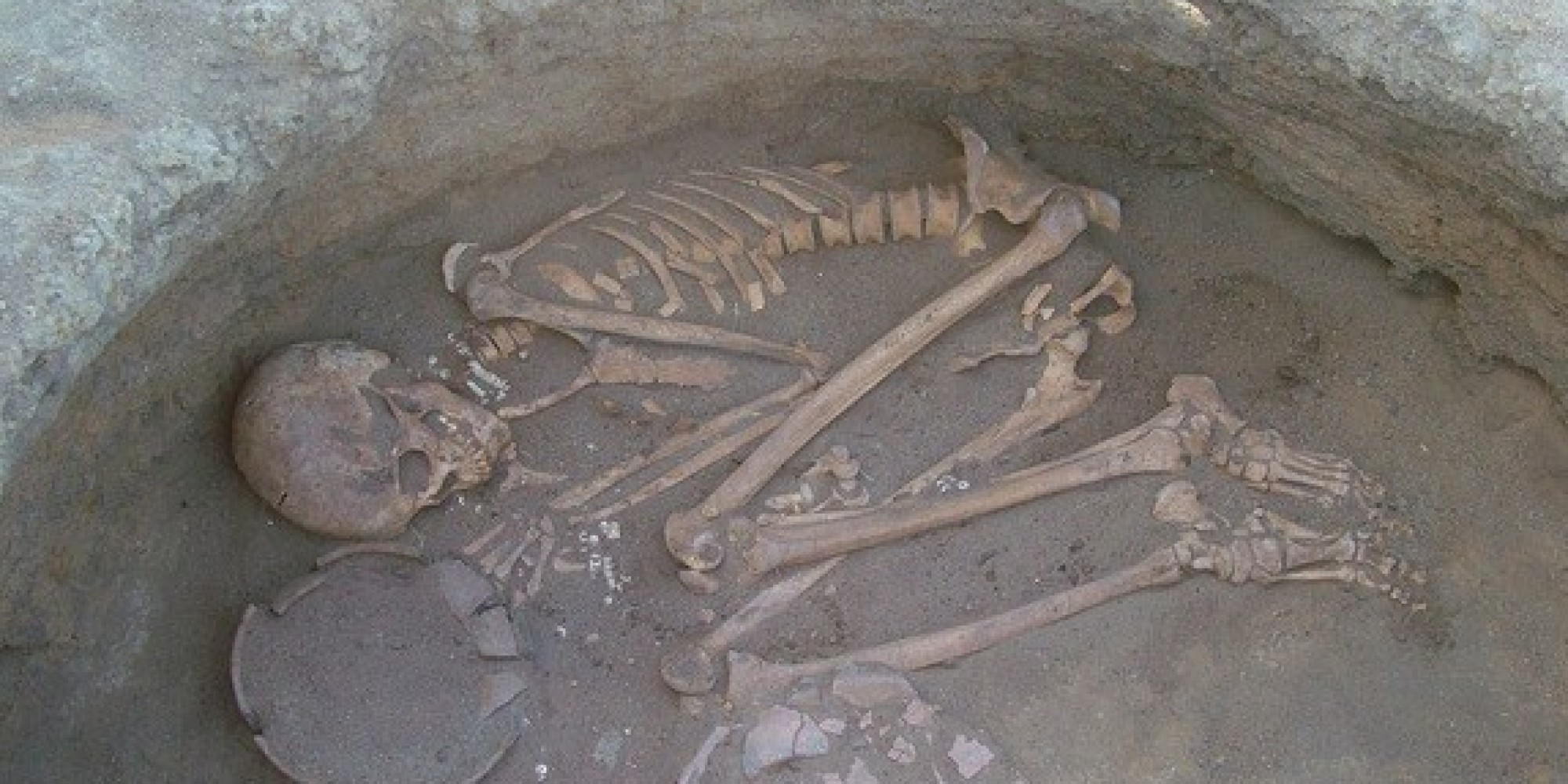 Prehistoric Plaque Reveals What Early Humans Ate