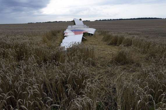 Debris from the plane lies in a wheat field at the site of the crash on July 19, 2014.(ALEXANDER KHUDOTEPLY/AFP/Getty Images)