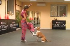 Woman dancing with dog | Pic: YouTube