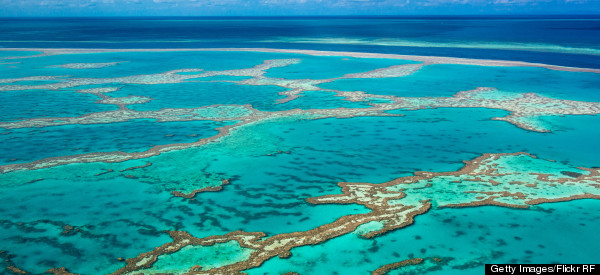 The Great Barrier Reef Won't Look Like This For Long