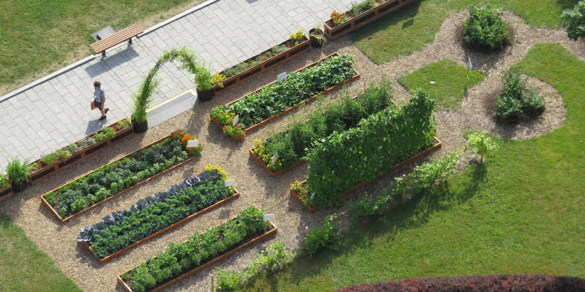Visite du potager de l 39 assembl e nationale vid o for Jardin quebec
