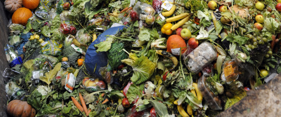 BIOGAS FOOD WASTE