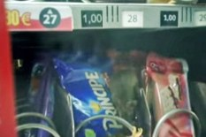 Mouse in vending machine | YouTube