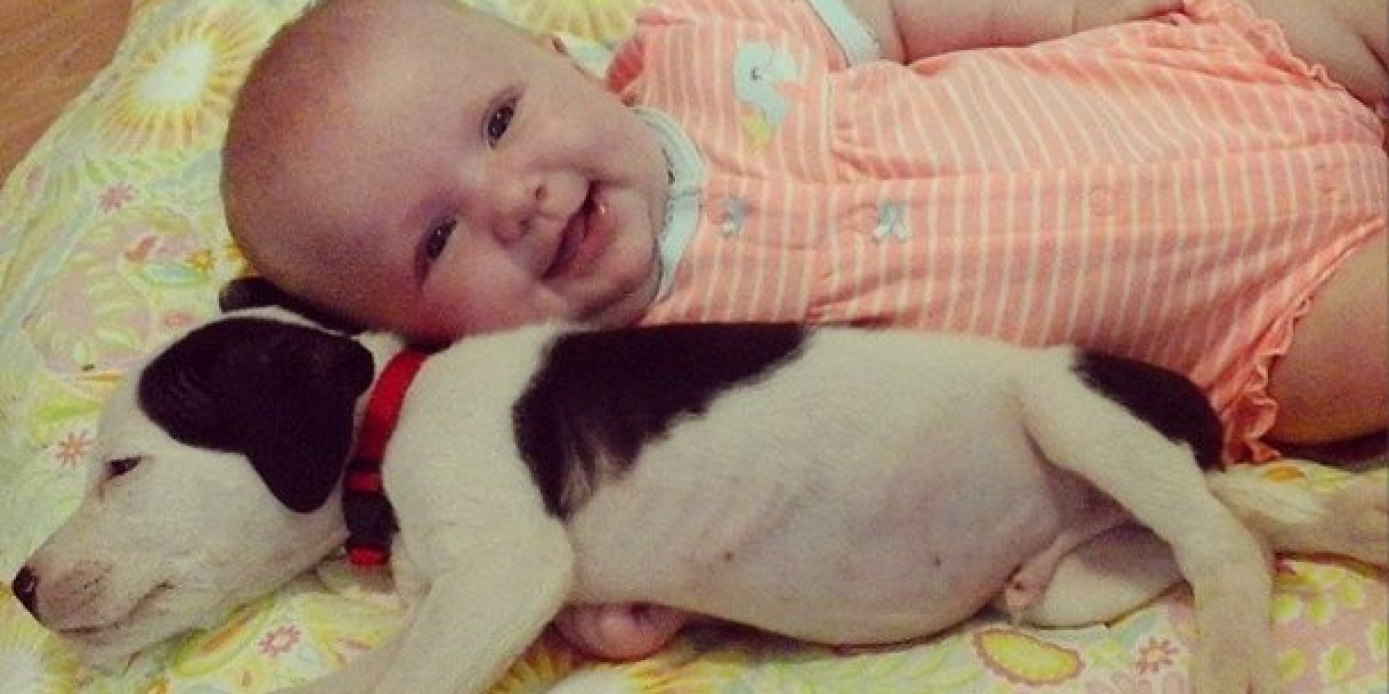 Baby, Pit Bull Puppy Are Cutest Best Friends You'll See Today