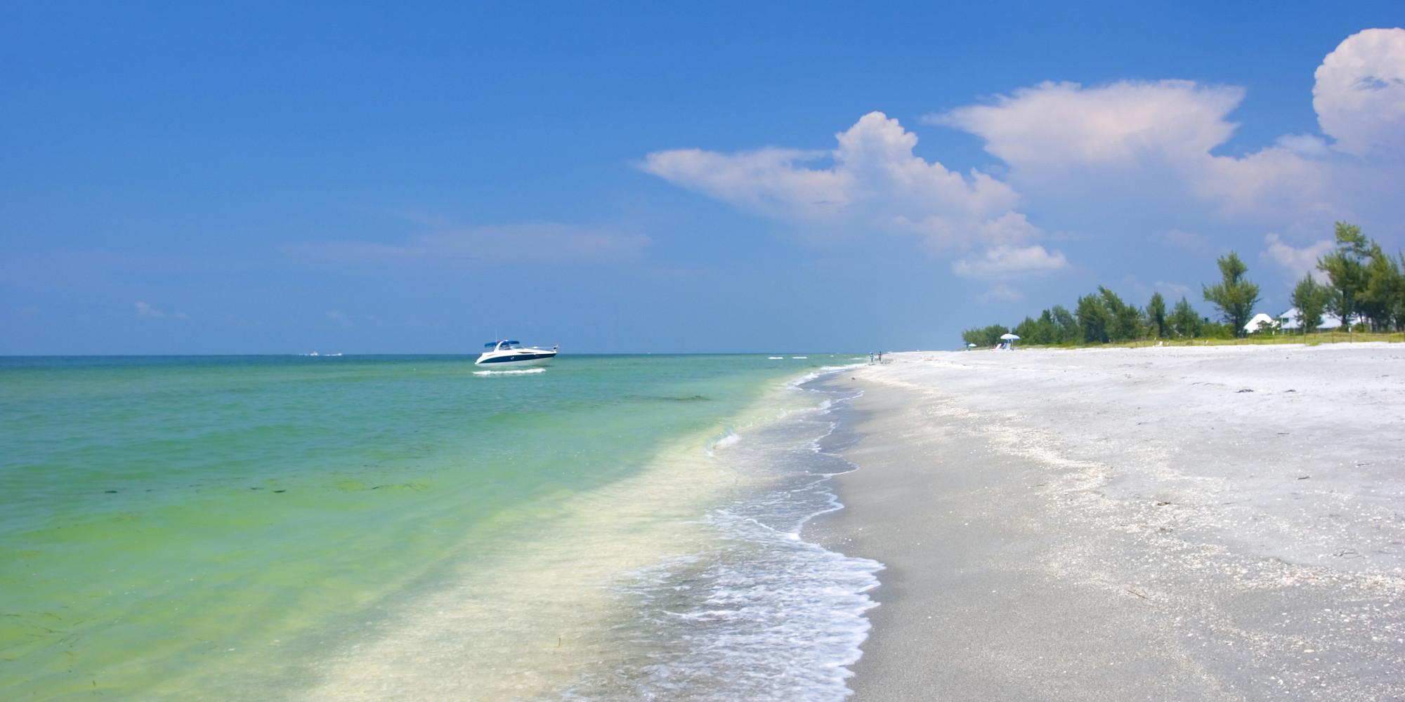 If You Like Seashells, You Should Go To Sanibel Island STAT