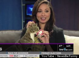This Is What Happens When News Broadcasts Go Hilariously Wrong