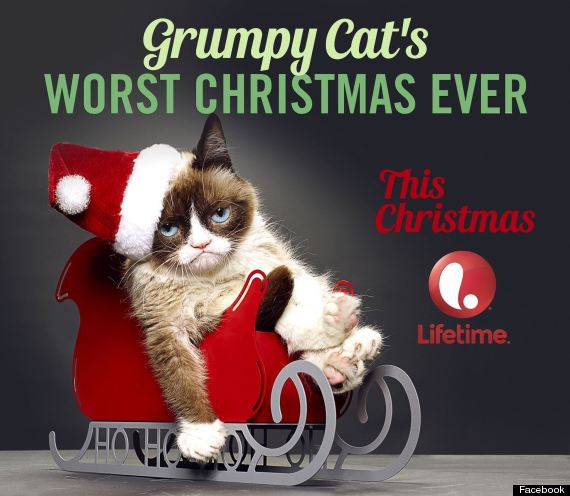 grumpy cat to film christmas movie in vancouver. Black Bedroom Furniture Sets. Home Design Ideas