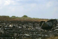 The MH17 crash site