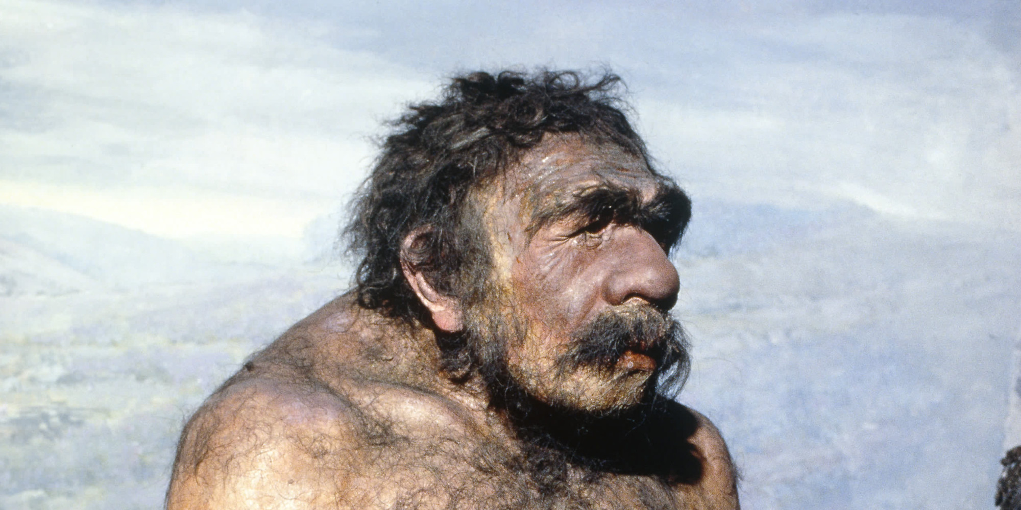 Neanderthal Baby How to Eat Meat Like a...