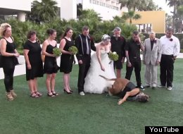 No, This Dog Will NOT Pose For Your Wedding Photos