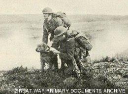 20 increíbles imágenes de animales en la Primera Guerra Mundial (FOTOS)