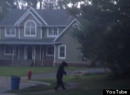 Nothing To See Here. Just A Bear Walking Upright Around The Streets Of New Jersey